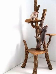 Arbre En Bois Deco : arbres chat 10 id es et photos ~ Premium-room.com Idées de Décoration