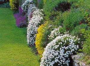 Mur De Fleurs : jardin en pente vivaces pour fleurir un mur ~ Farleysfitness.com Idées de Décoration