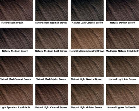Brown Hair Colors Names by This Hair Color Chart For Brown Shades Available Clairol