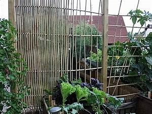 Bambus Sichtschutz Selber Bauen : rosenbogen selber bauen fabulous bauen sie fr den garten with rosenbogen selber bauen ~ Markanthonyermac.com Haus und Dekorationen