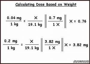 Calculations, Doses and Dosage Regimens