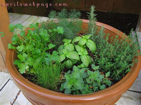 Herb Garden Ideas Container Herb Garden Ideas Balcony