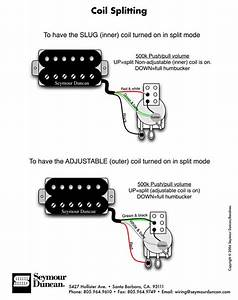 Double Neck Wiring Schematics Modification