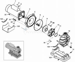Sta-rite Dyna-jet Pump Parts