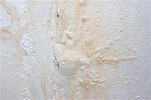 Schimmel An Der Wand Was Tun : wasserschadensanierung bautrocknung dortmund b d ihr fachbetrieb ~ Buech-reservation.com Haus und Dekorationen