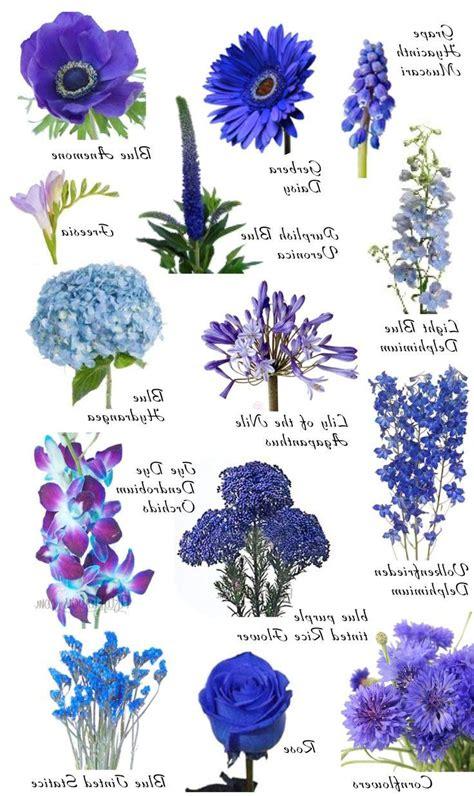 blue flowers names blue flowers list thin blog