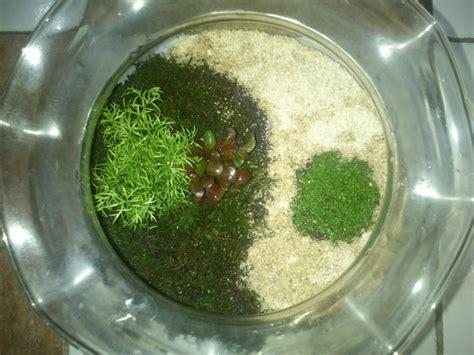 model akuarium kecil cocok  hiasan kamar