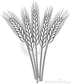black and white wheat ears royalty free stock photography image 19684717