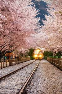 100 best South Korea Scenery images on Pinterest