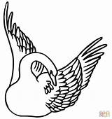 Swan Coloring Wings Swans Swimming Mute Drawing Unicorn Printable Drawings Clipart Unicorns 55kb 1280px 1200 sketch template
