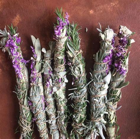 herbal classes herb gardening herbal plants herbal