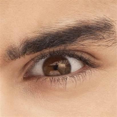 Direction Eyes Zayn Liam Harry Niall Eye