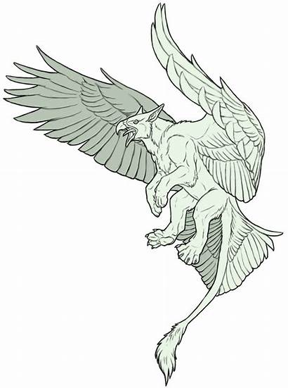 Drawing Gryphon Sketch Deviantart Drawings Griffin Creature