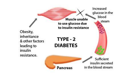 los efectos  corto plazo de la diabetes tipo