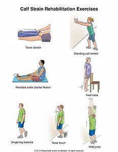 17 Best images about Back Strain Exercises on Pinterest ...