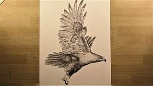 How to draw a flying Falcon? Wild bird - Karakalem sahin ...