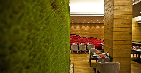 canapé interiors green wall with living grass as part of the canape