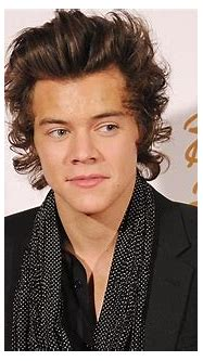 Harry Styles Reportedly Sues Tabloid Over Fake Nude Photo