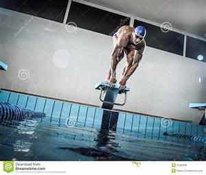 Pool Position : swimmer standing on starting block royalty free stock ~ A.2002-acura-tl-radio.info Haus und Dekorationen