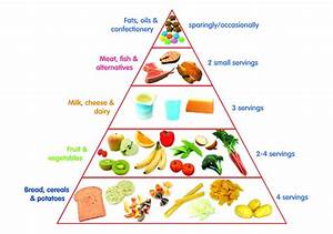 Diagram  New Food Pyramid Diagram