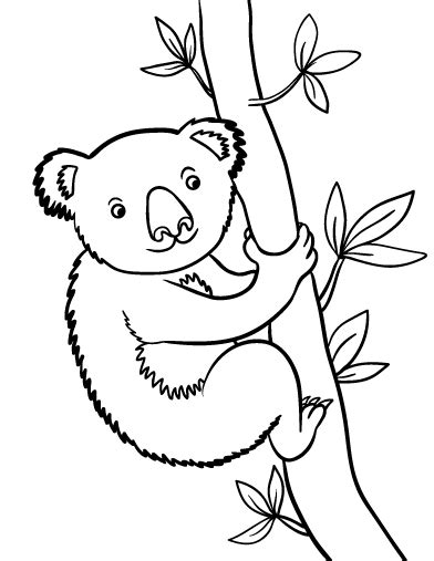 Kleurplaat Koala by Printable Koala Coloring Page Free Pdf At