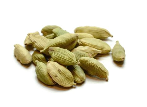 what is cardamom cardamom green pod high plains spice company