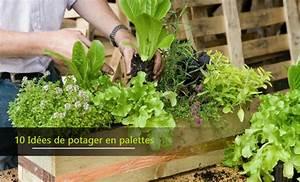 Potager Hors Sol : 10 id es de potager hors sol en palettes faire sois m me ~ Premium-room.com Idées de Décoration
