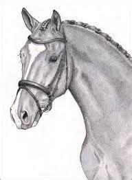 afbeeldingsresultaat voor paardenhoofd tekening  stappen
