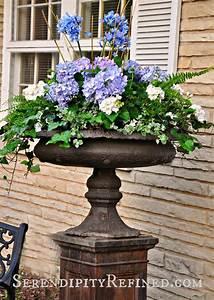 Landina, Useful, Ideas, For, Planting, Urns