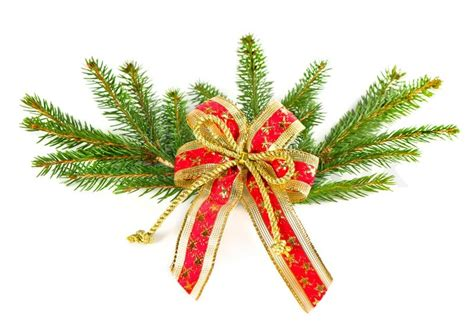Awards And Decorations Branch by Tree Branch With Ribbon Decoration