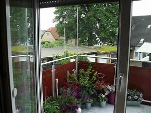 Katzen Balkon Sichern Ohne Netz : balkonsicherung seite 2 katzen forum ~ Frokenaadalensverden.com Haus und Dekorationen