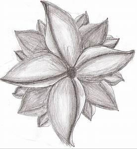 Pencil Drawings: Art Pencil Drawings Of Flowers