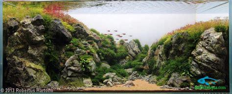 aga aquascape 2013 aga aquascaping contest 120l 200l thủy sinh