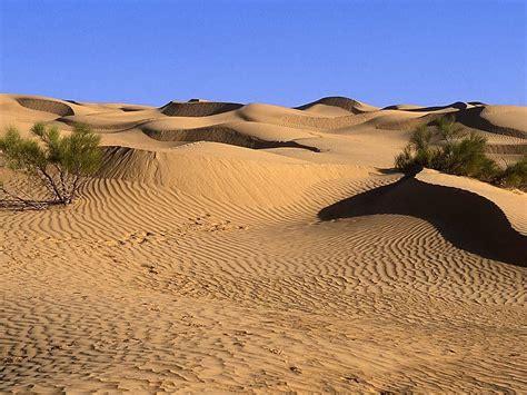desert landscap desert landscape car interior design
