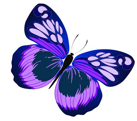 Purple Clipart Pink And Purple Butterfly Clipart Clipart Panda Free