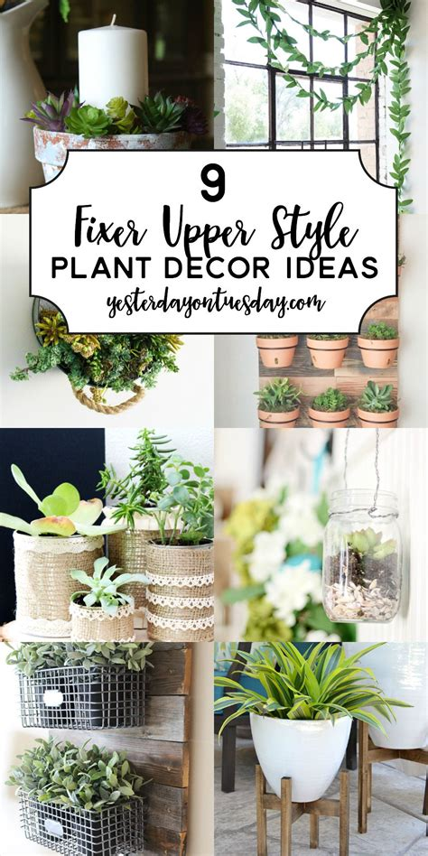 fixer upper style plant decor ideas hometalk diy
