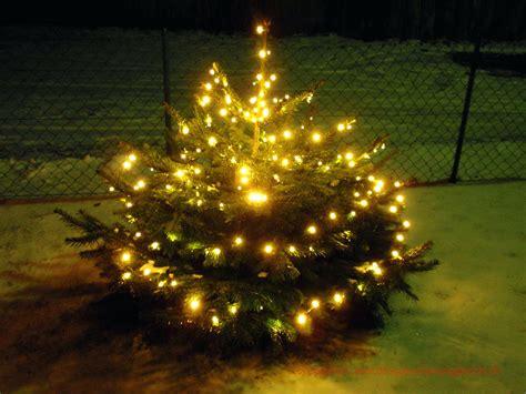 Lichterketten Led Innen by Lichterkette Weihnachtsbaum Snhrcpp Org
