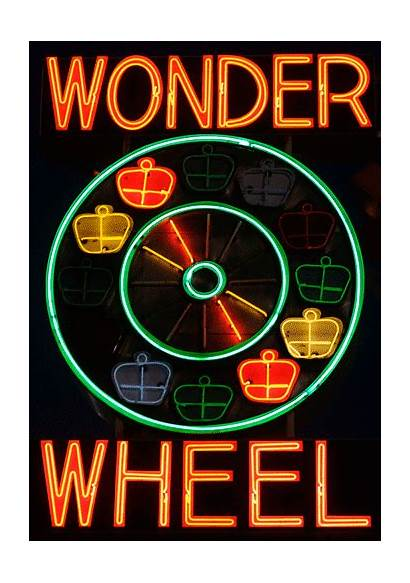 Neon Signs Lights York Bright Sign Animated
