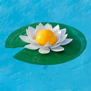 Thermometre De Piscine : thermom tre piscine lotus la boutique desjoyaux ~ Carolinahurricanesstore.com Idées de Décoration