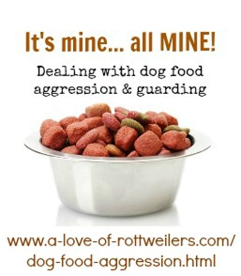 dog food aggression  love  rottweilers