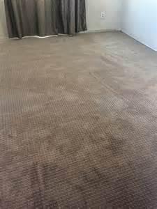Smart Carpet Complaints by Karastan Smartstrand Carpet Reviews Floor Matttroy