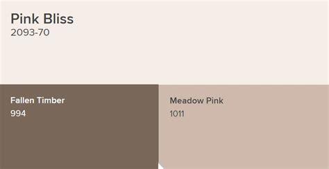 benjamin moore pink bliss paint color schemes interiors