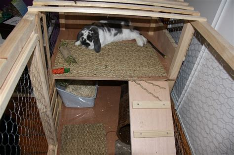 cabane pour lapin exterieur am 233 nager un enclos int 233 rieur pour mon loulou page 2