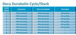 Deca Cycle  Is It Strong Or Weak  Find Now   2019