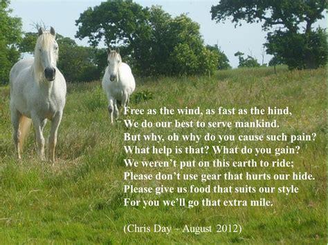 horse quotes poems poem quotesgram poemsearcher