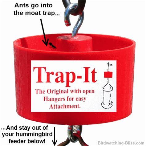 how to keep ants hummingbird feeder how to keep ants out of your hummingbird feeder