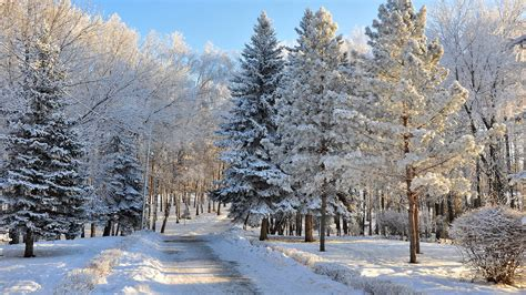 Beautiful Snowy Russian Winter (hd Wallpapers) Volganga