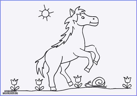 das beste von ausmalbilder pferde zum ausdrucken