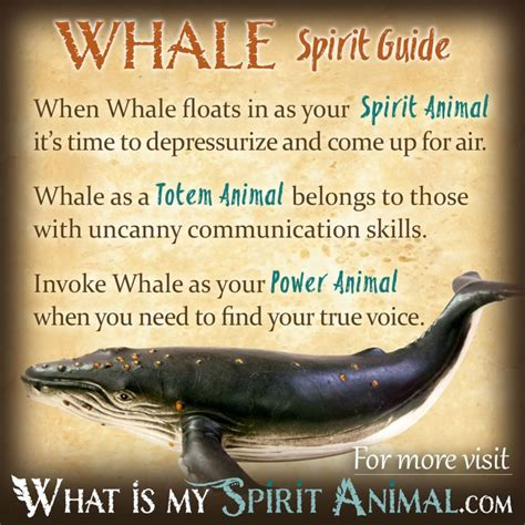 whale symbolism meaning mammals animals  power animal
