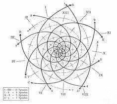 fibonacci flower tattoo - Google Search | tattoo ...